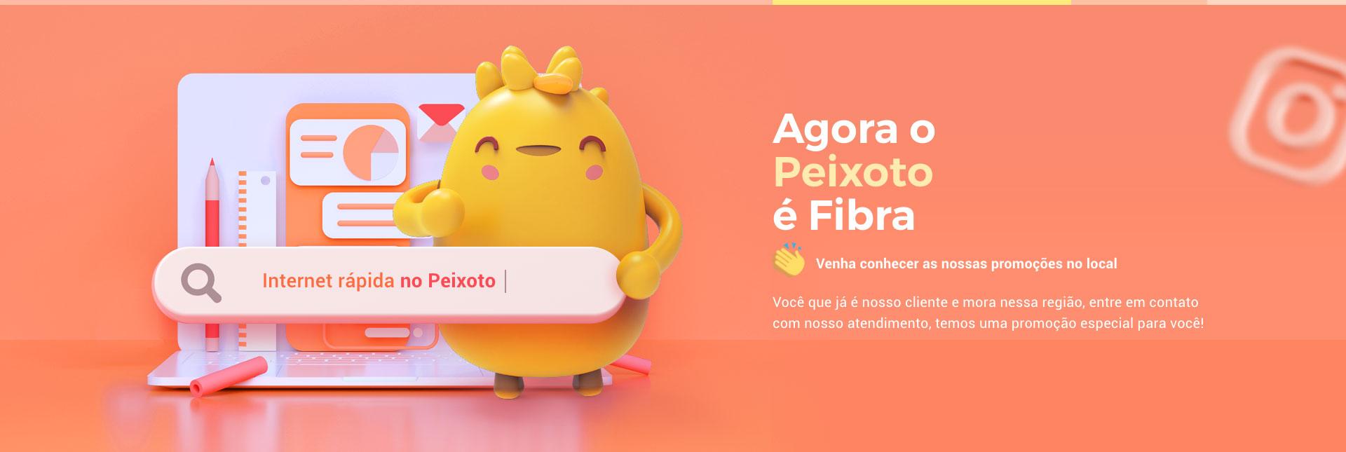 Banner Peixoto